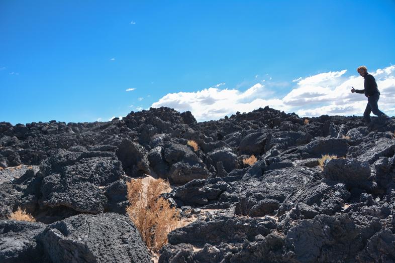 Antofagasta de la Sierra Catamarca Belen Argentine plantes dans la lave tim arriere plan