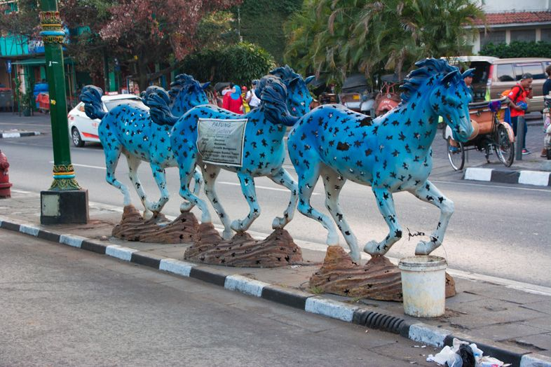 chevaux yogyakarta en indonesie