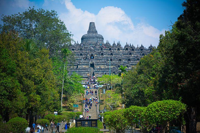 Chemin verdoyant vers le temple de Borobudur en Indonésie