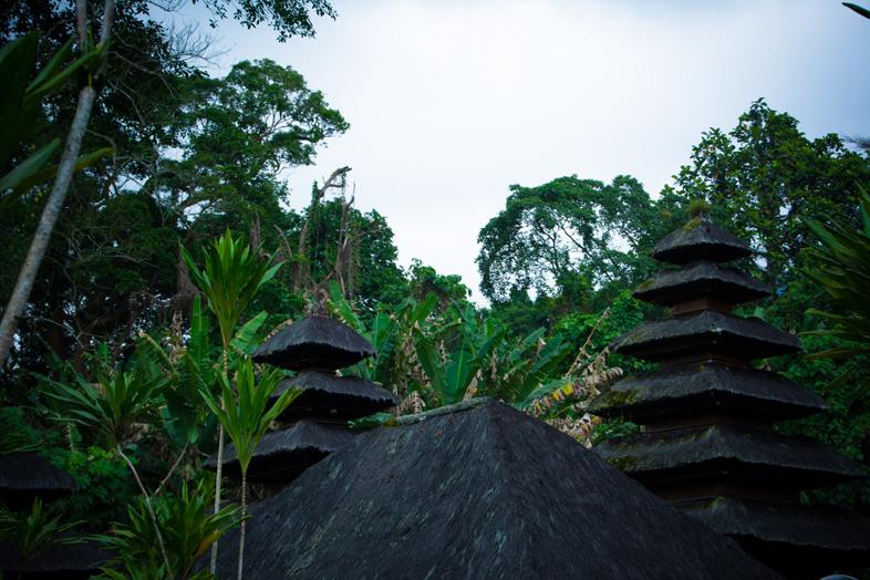 temple-batukaru-bali-jungle