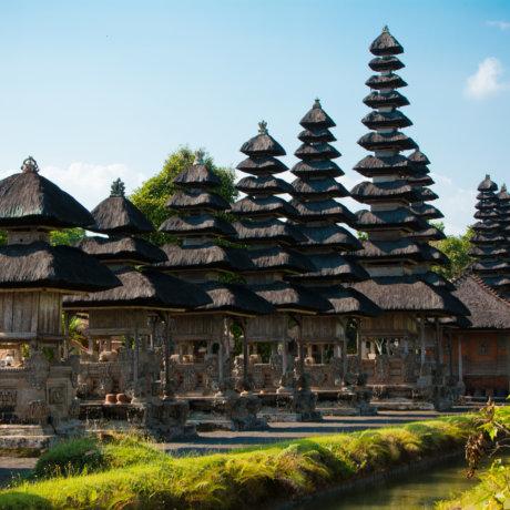 temple spotshow
