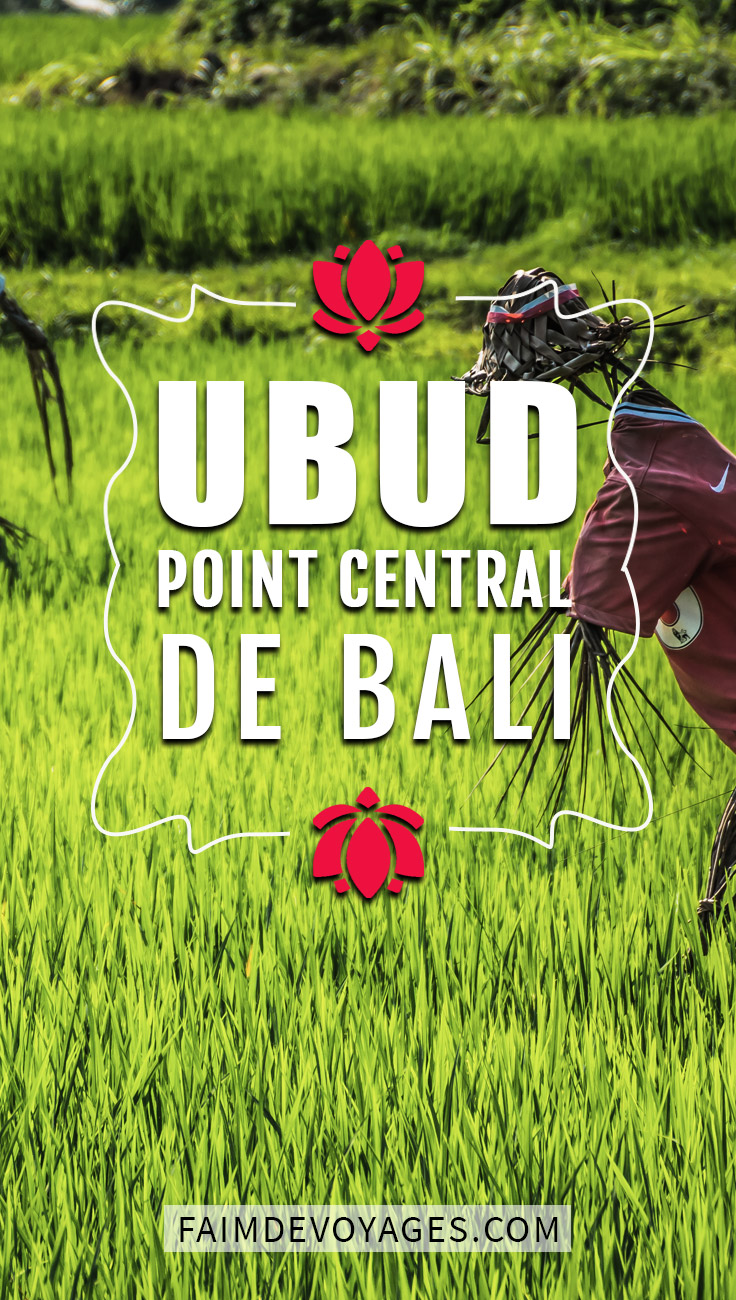 Ubud Point De Chute Pour Visiter L'île De Bali