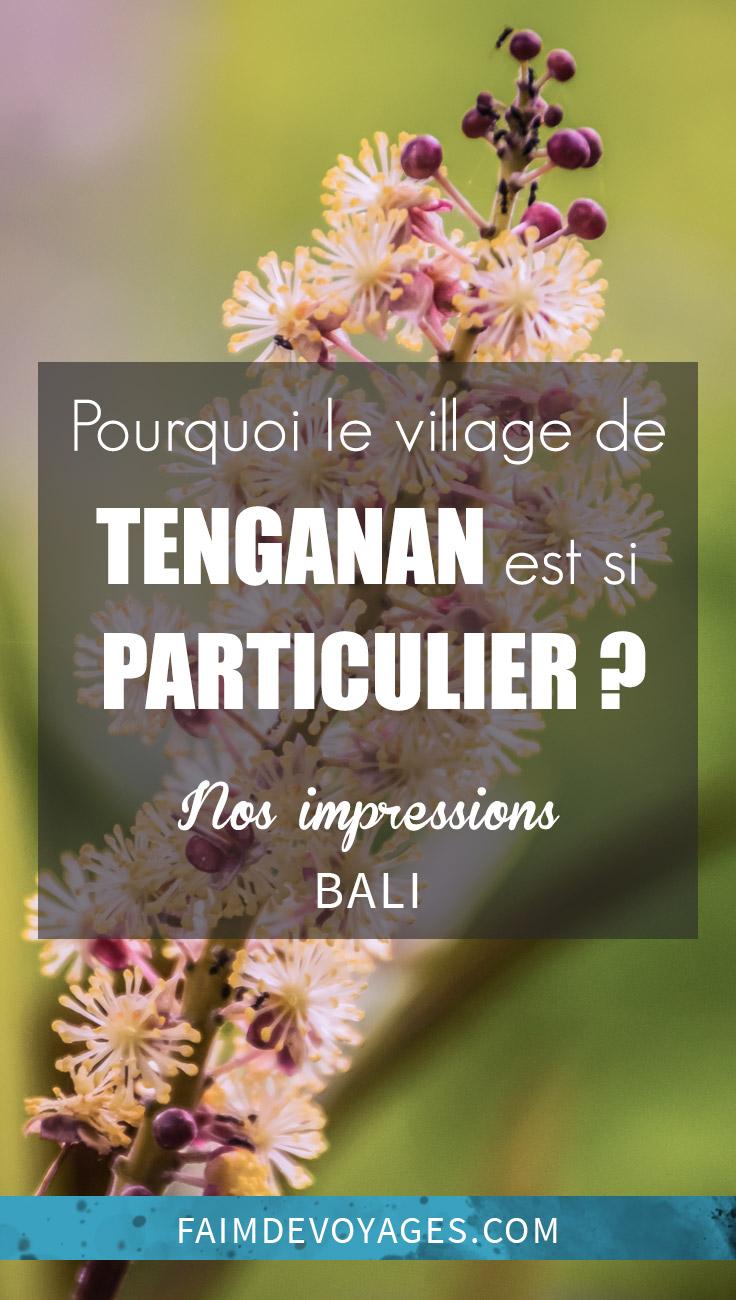 Pourquoi Nous N'avons Pas Aimé Tenganan à Bali