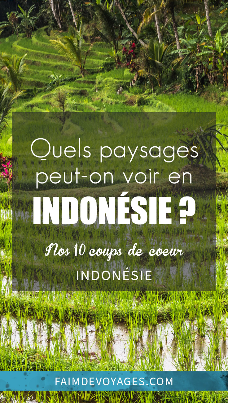 Quels Sont Les Paysages Que L'on Peut Voir En Indonésie En Voyage