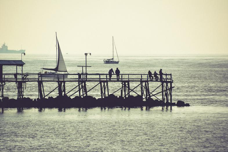 vue sur le ponton pres du de la reserve ecologique de Buenos Aires reserva ecologica costanera sur en Argentine