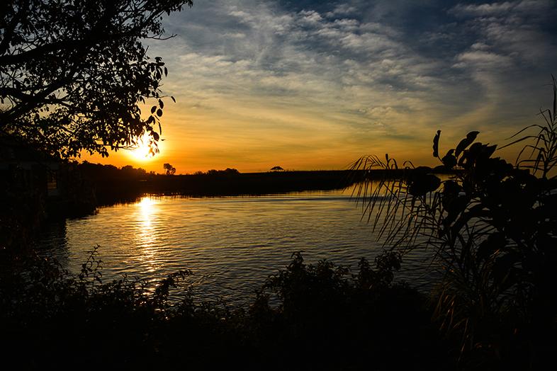el estero del ibera paysage coucher de soleil faune