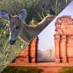 itineraire-en-amerique-du-sud-missions-jesuites-esteros-del-ibera