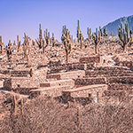 pucara-de-tilcara-a-jujuy-en-argentine-ruines-omaguacas-itineraire
