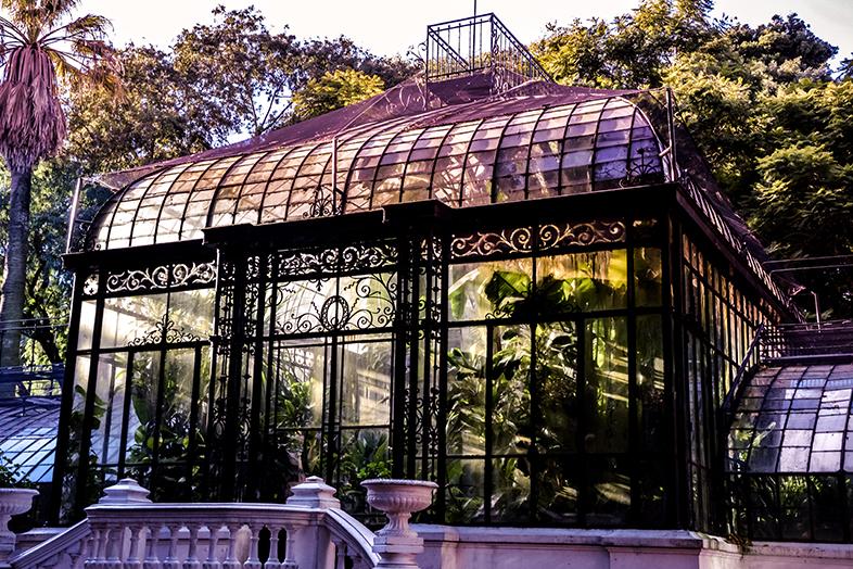 serre rayon de soleil jardin botanique serre buenos aires