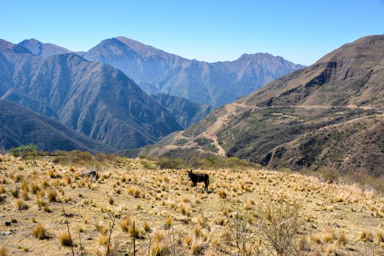 ane-chemin-de-l-inca-jujuy-argentine-randonnee-trekking-marche-santa-ana