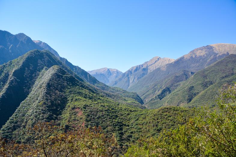 La vallée devient plus verte quand on descend du chemin de l'Inca Argentin