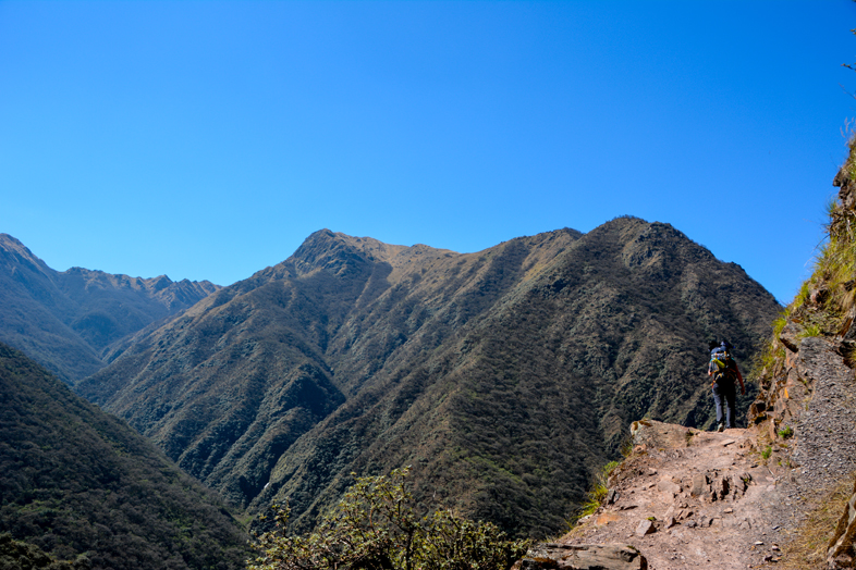 sentier-altitude-parc-national-calilegua-jujuy-argentine-jungle