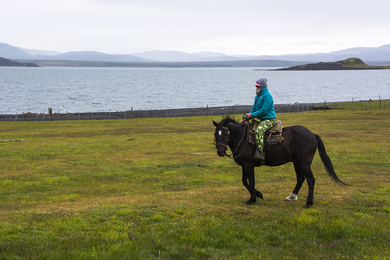 volontariat workaway puerto natales chili patagonie cecilia cheval