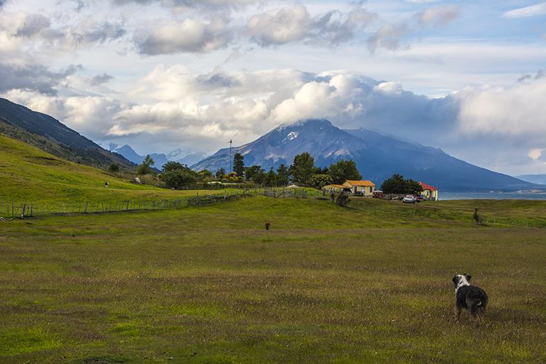 volontariat workaway puerto natales chili patagonie vue de estancia