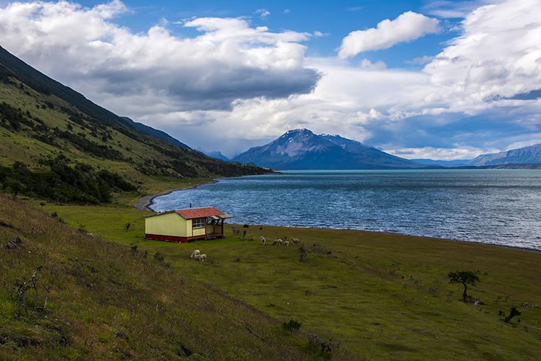 volontariat workaway puerto natales chili patagonie vue de la cabane avec les moutons