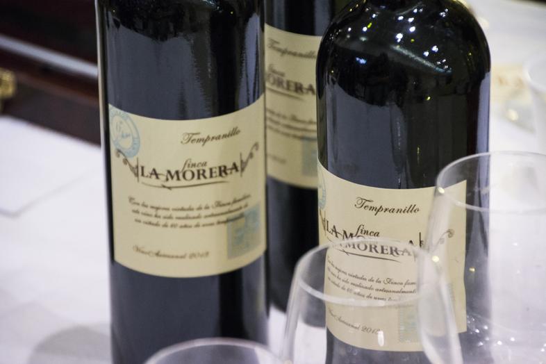 Wwoofing volontariat San Rafael Mendoza Argentine viticole vigne vin finca morera