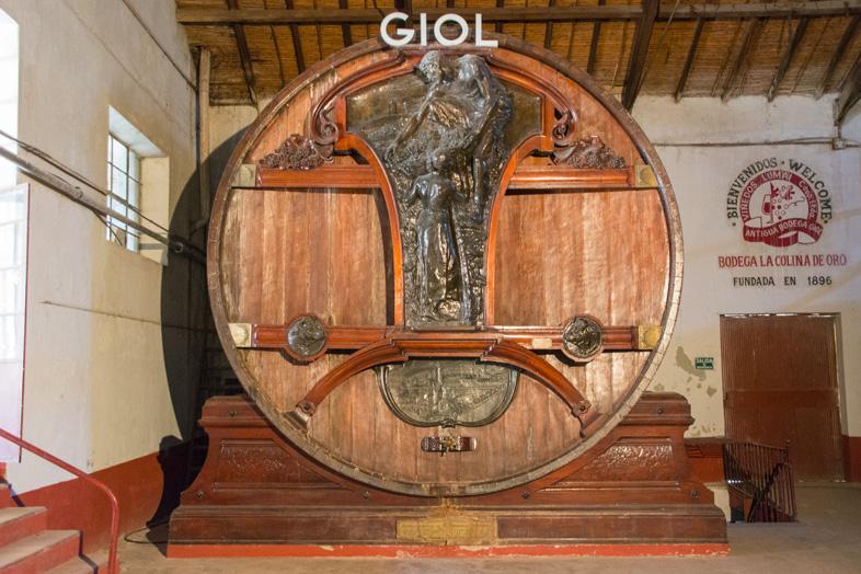 Mendoza-un-des-plus-grands-tonneaux-du-monde-en-chene-francais-pour-le-vin-vignoble-bodega-Giol-Colina-de-Oro