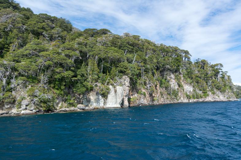 bosque arrayanes villa la angostura parc national argentine navigation sur le lac