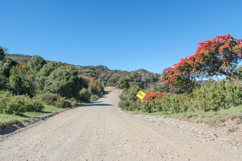 route en mauvais état dans le parc national Lanin en Argentine