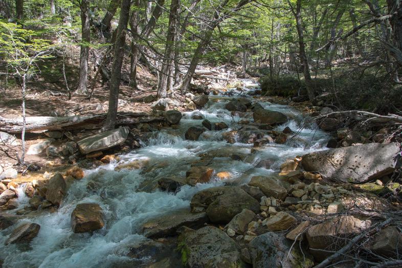 Refuge-Frey-randonnee-trekking-bariloche-argentine-vue-sur-la-riviere-depuis-le-sentier
