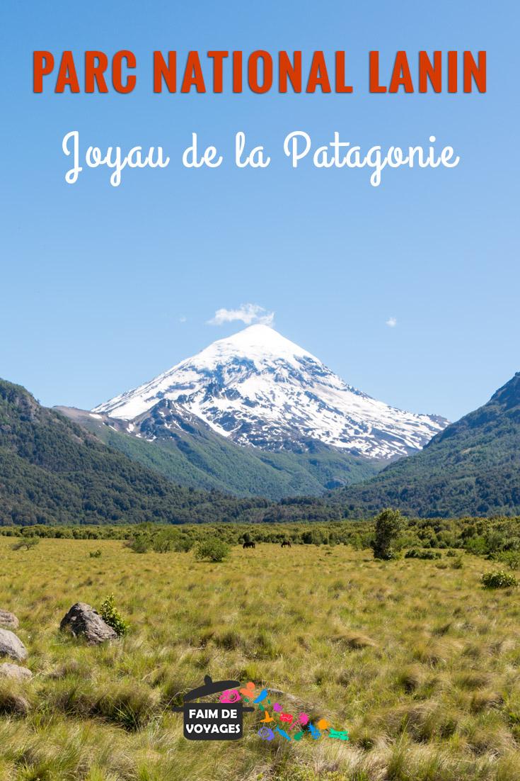 Joyau de la patagonie, le parc national Lanin en Argentine Pin