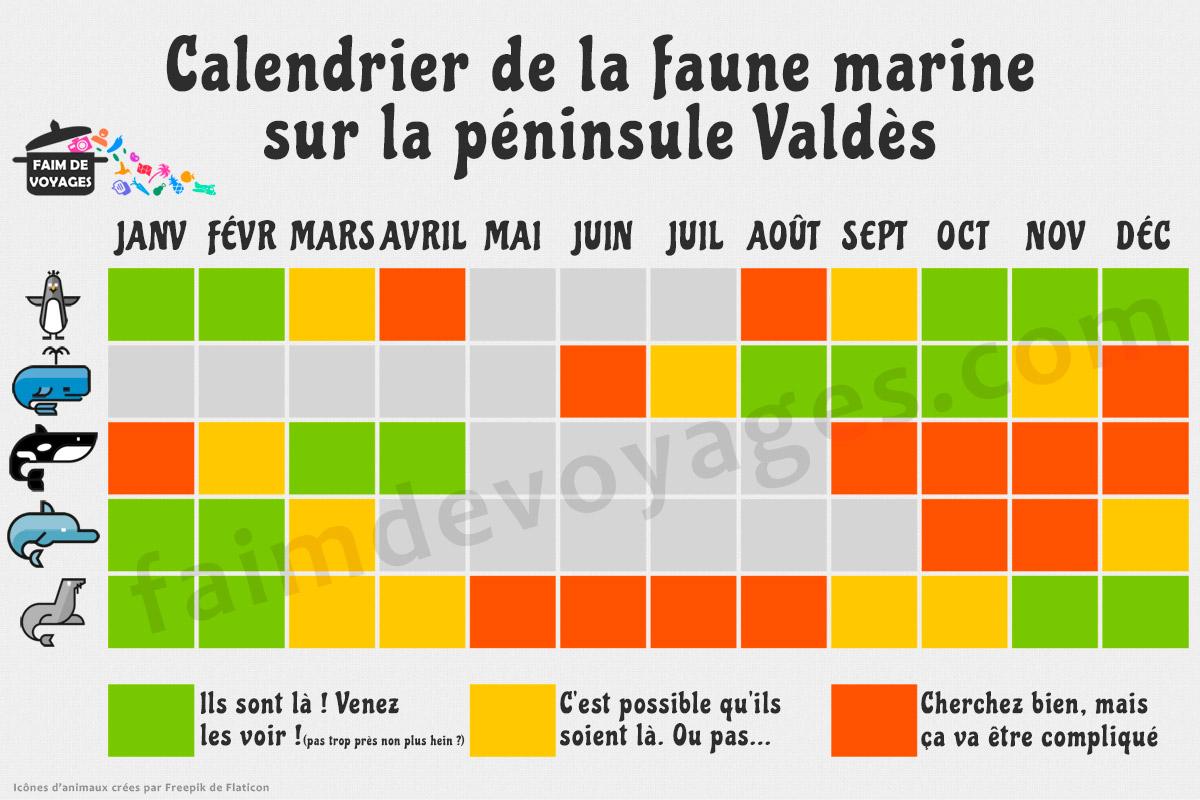 calendrier faune peninsule valdes baleines manchots orques dauphins lions de mer