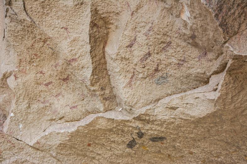 Peintures rupestres représentant des guanacos chassés par des hommes dans la Cueva de la Manos en Argentine