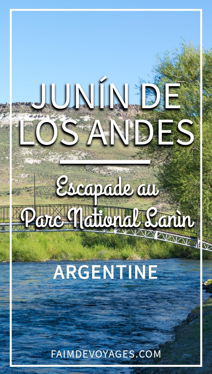 Junin De Los Andes Et Le Parc National Lanin