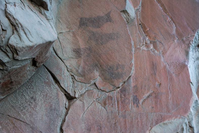 peintures rupestres d'animaux dans le Cerro del Indio près du Lago Posadas en Argentine