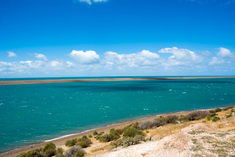 peninsule valdes argentine animaux faune vue de la baie sur mer