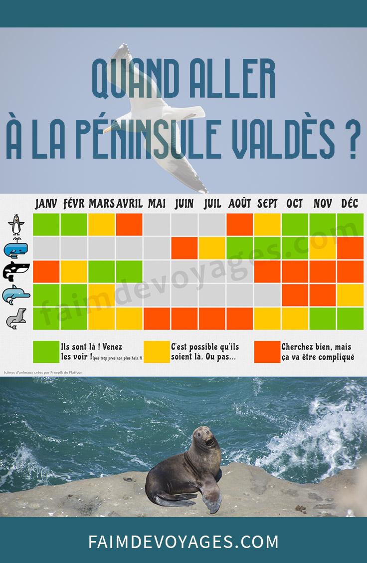 Période Pour Voir Des Baleines à La Penincule Valdes