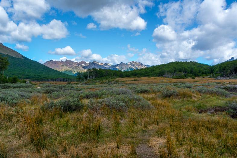 tourbiere zone marecageuse chemin vers laguna esmeralda randonnee trek Ushuaia patagonie argentine