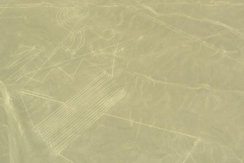 singe-spirale-lignes-de-nazca-perou-voyage-avion
