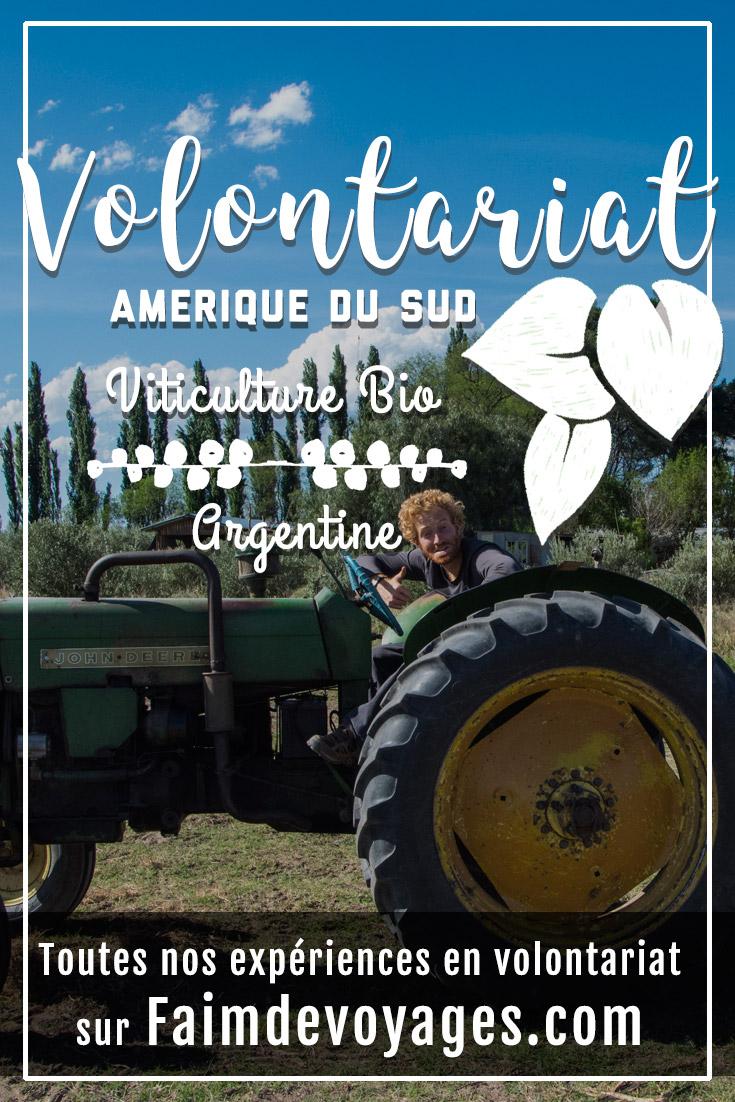 volontariat viticulture