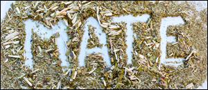 Tradition Argentine. Comment préparer le maté et quelles sont ses bienfaits ?