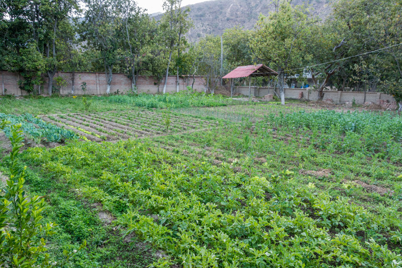volontariat permaculture jardin workaway bolivie sucre