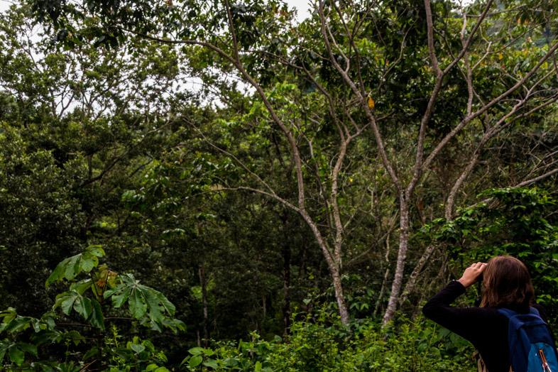 Cécilia observe les oiseaux aux jumelles à Minca en Colombie