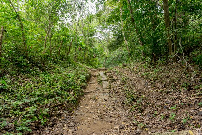 chemin calabazo pueblito parc tayrona colombie