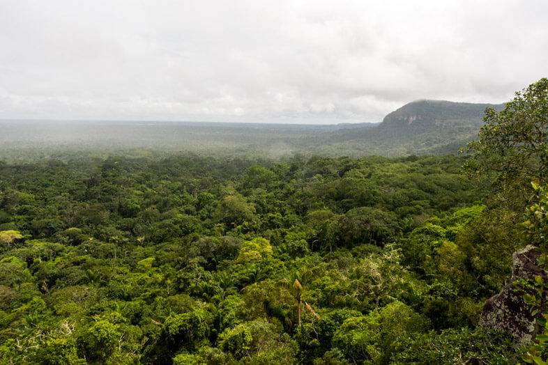 point-de-vue-cerro-azul-panorama-foret-san-jose-del-guaviare-colombie