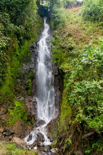 cascade-jardin-colombie-que-faire