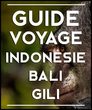 Voyager en Indonésie : les informations pratiques