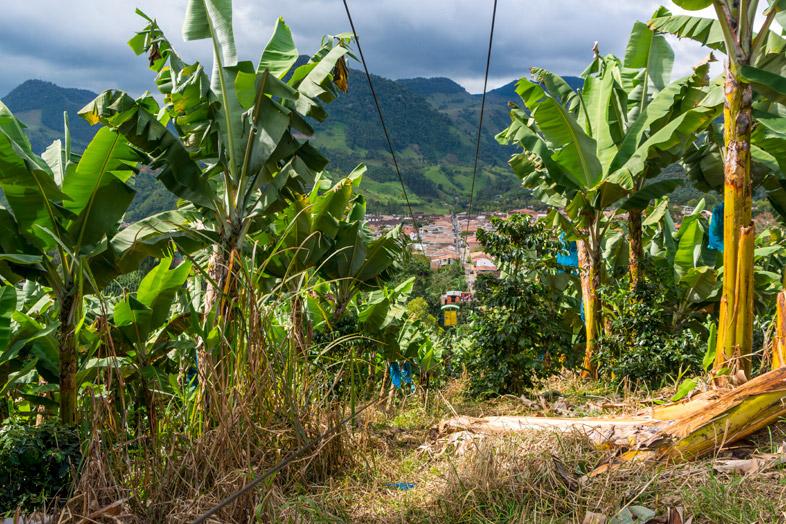 jardin-colombie-que-faire-telepherique