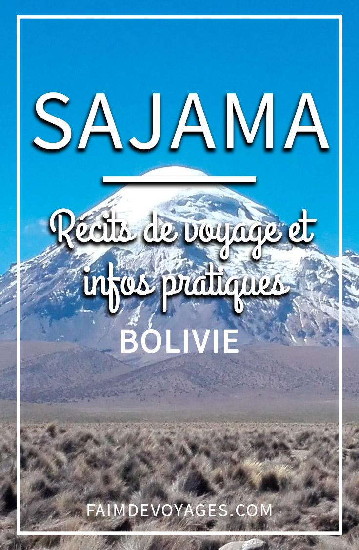 Ce Qu'on Peut Faire à Sajama En Bolivie