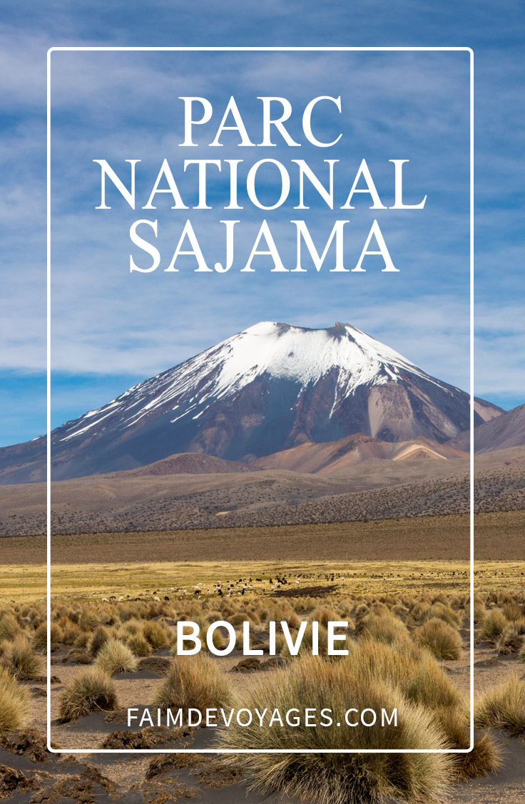 Le Parc National Sajama En Bolivie Sur Pinterest