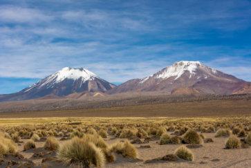 Postshow Le Volcan Parinacota (6 348 M) Et Le Pomerape (6 282 M D'altitude) Dans Le Parc Sajama En Bolivie