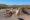 Des Lama Imprudents Traverses La Route En Bolivie Près De Tupiza