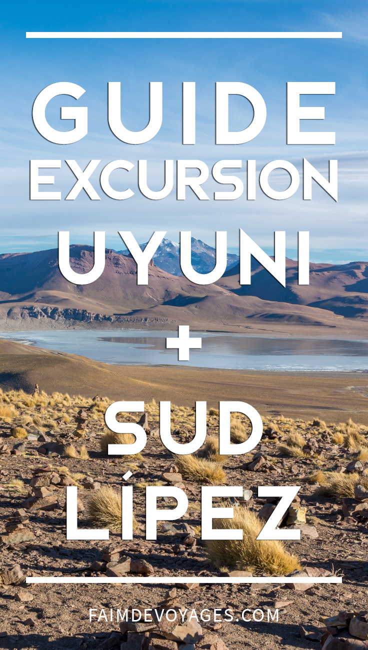 Guide Pour Faire L'excursion Sur Le Salar