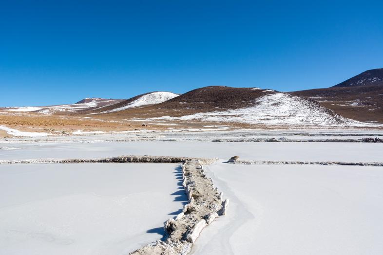 Cristaux De Borax Dans Une Lagune Du Sud Lipez En Bolivie