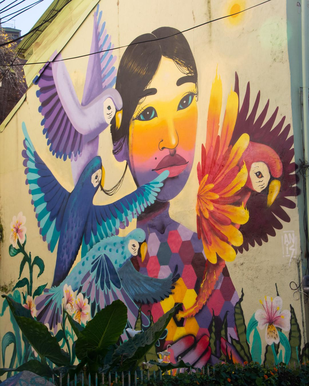 Femme Et Faune Du Chili En Fresque à Valparaiso