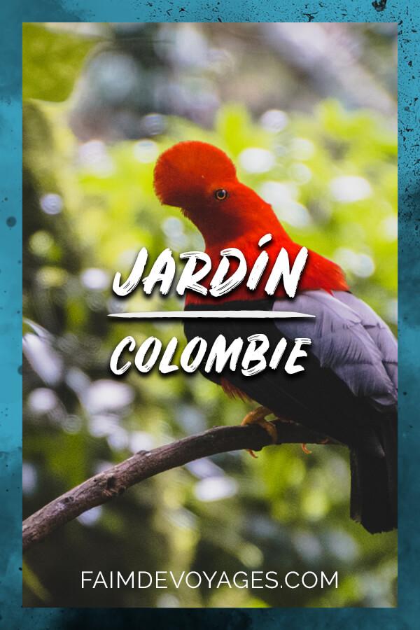 Coq Du Pérou Observé à Jardin En Colombie